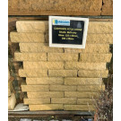 Costhorpe Pitch Faced Stone Buff